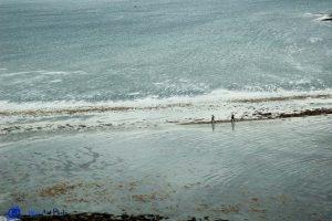 ÎLe de Skye - Coral beach -