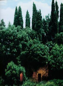Pierre.Peyrolle-détail Dante au tombeau