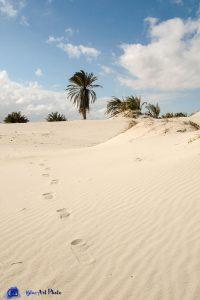 Tunisie -Djerba