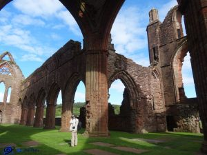 Ecosse - Sweetheart abbey