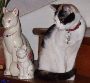 Mimi et objets de décoration