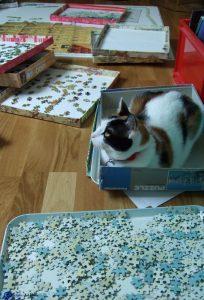 Mimi et le puzzle