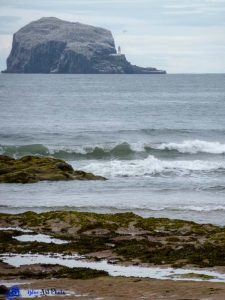 Ecosse - Bass Rock