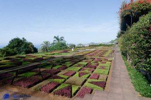 Madère - Jardin botanique