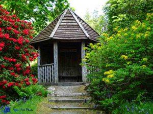 Ecosse - Ardkinglas Woodland Gardens