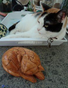 Puzzle chat et Mimi