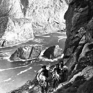 "St Kilda - Hommes oiseaux"" -chasse aux fulmars"