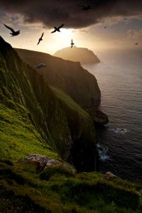 St-kilda-fulmars-tallest-cliff - Source Scotland info guide